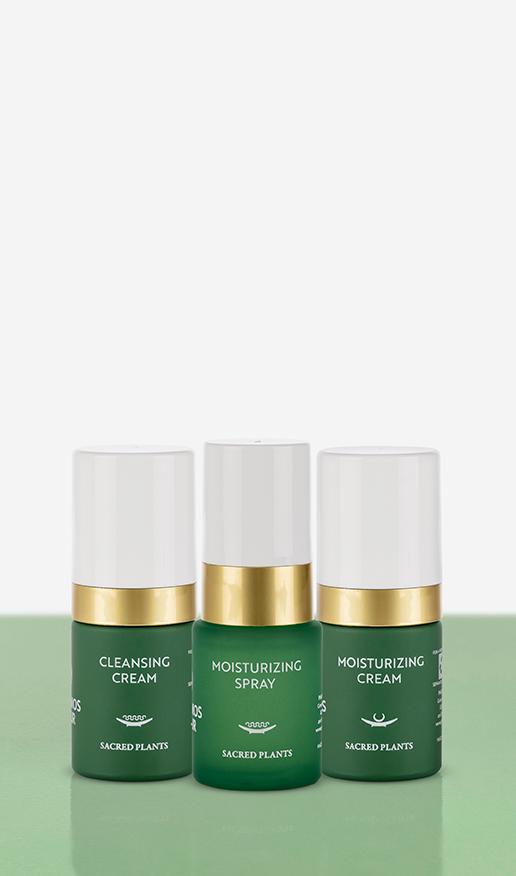 Moisturizing-Set Produkte und Verpackung auf grünem Untergrund