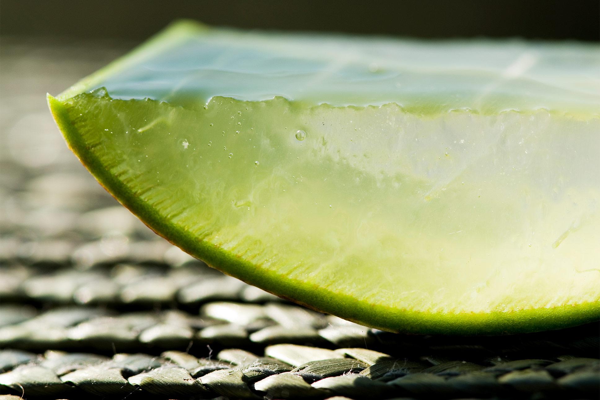 Ausschnitt Aloe Vera Scheibe auf Bastmatte