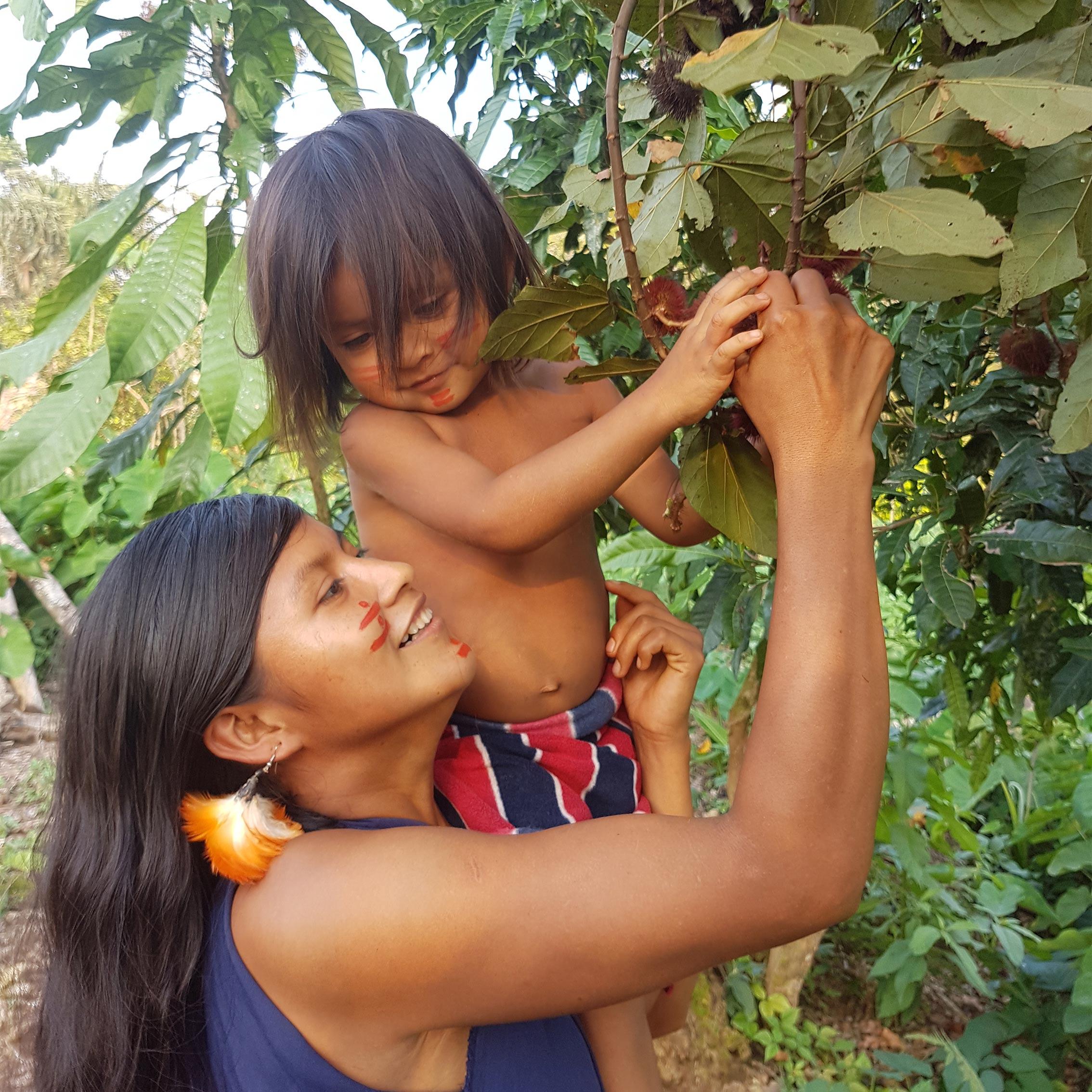 Frau erntet mit ihrem Kind die Achiote